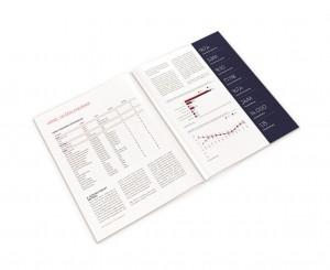 Turk Yapi Sektoru Raporu - Ic sayfa