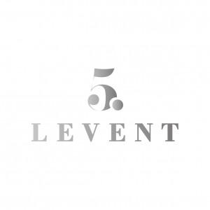 5L kurumsal logo copy